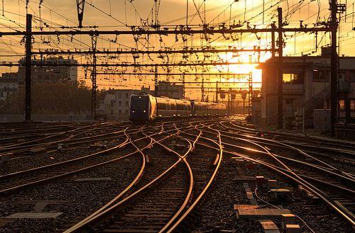 Gare de Lyon-Perrache van Sander van der Werf