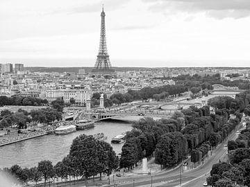 De Seine, Pont Alexandre en de Eiffeltoren van Michaelangelo Pix