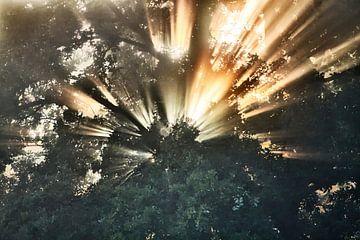 De Explosie van licht von peter reinders