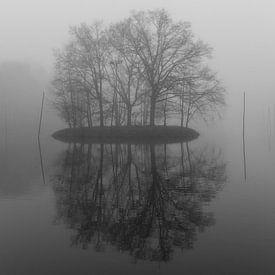 Eiland in de Mist 2 van Stephan van Krimpen