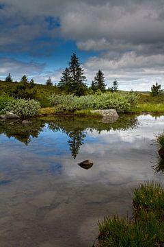 Natuur in Noorwegen van Hamperium Photography