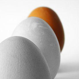Eggs Orange sur Ruxandra Proksch