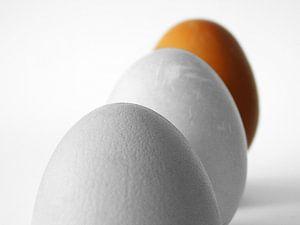 Eggs Orange van