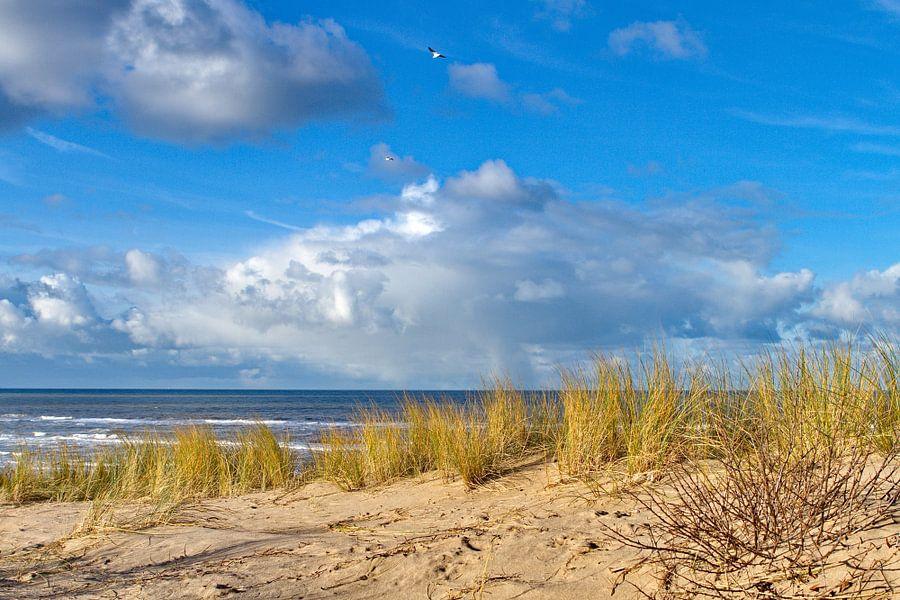 Helmgras met uitzicht over de Noordzee van Marcel Verheggen