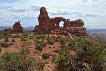 Arches-Nationalpark,Utah,Amerika von Bernard van Zwol