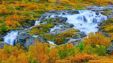 Herfst langs de Gamle Strynefjellsvegen, Noorwegen van Henk Meijer Photography