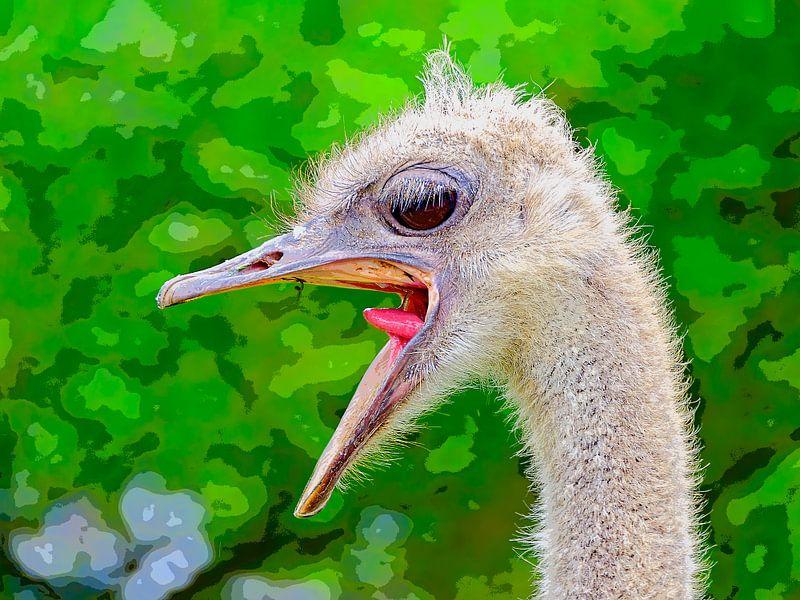Ostrich van Leopold Brix