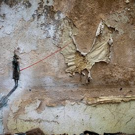 eingeschlossener Schmetterling von Ina Bloemendal
