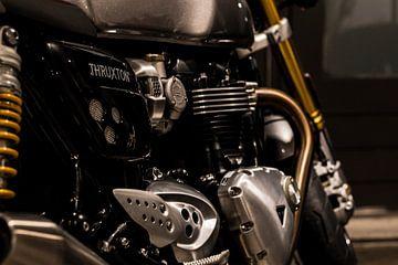 Triumph Thruxton R van Westland Op Wielen