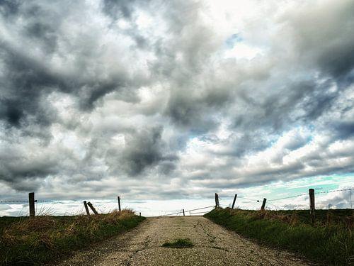 To the clouds van Lex Schulte