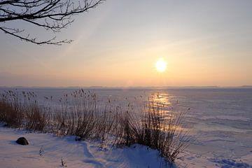 Morgenstimmung im Winter