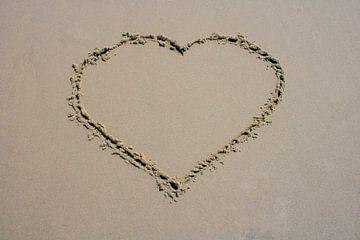 Perfect heart van Rutmer Visser