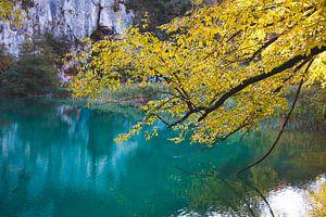 Plitvice meren, Kroatië, herfst, fotografie van Simone van Herwijnen