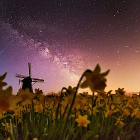 Les étoiles au moulin sur Peter Heins