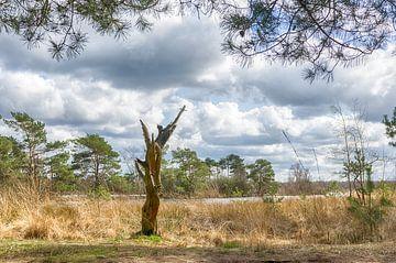 Kunstvoller Baumstamm von Mark Bolijn