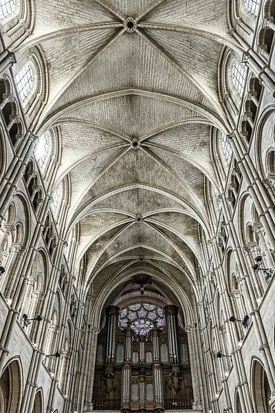 Detail van de kathedraal van Laon van Ellen van Schravendijk