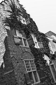 Monumentaal huis zwart/wit van Mariska Wondergem