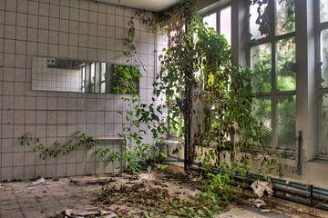 Urbex - De natuur neemt het terug over von Tim Vlielander
