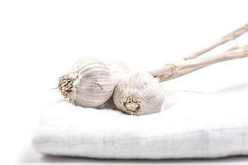 Sleeping garlic van Willy Sybesma