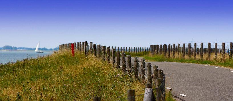 Schellinkhouterdijk in West-Friesland van Nathalie Pol