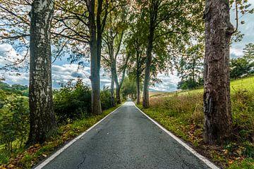 Die enge Strasse bei Wiesa / Erzgebirge von Johnny Flash