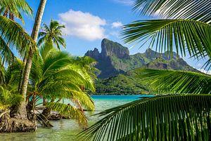 Weelderige natuur van Bora Bora