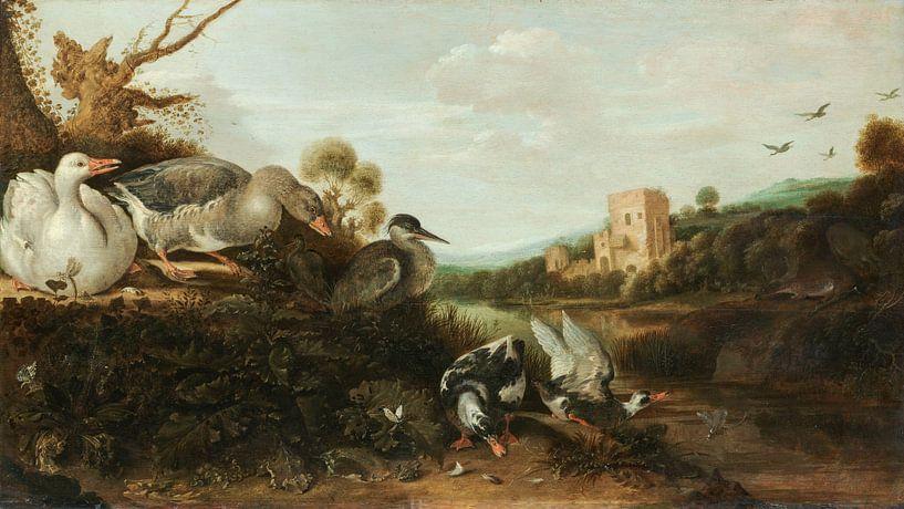 Watervogels, Gijsbert Gillisz. de Hondecoeter van Schilders Gilde