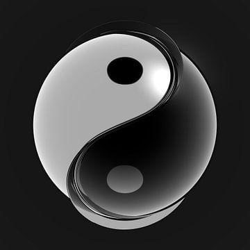 Yin-Yang Ball 2 van Jörg Hausmann
