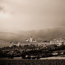 Assisi van Dennis Wierenga