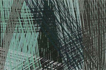 Lijnen 27. van Miriam Duda