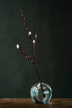 Foto print | wilgenkatjes in vaas | botanisch | modern van Jenneke Boeijink