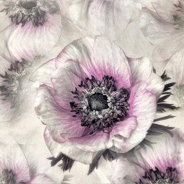 Nieuwe bloem nr. 4 van Lizzy Pe