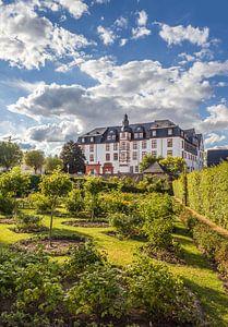 Rosengarten vor dem Residenzschloß Idstein