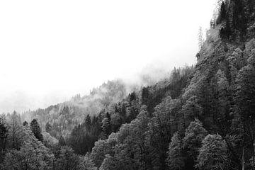 Nuages au-dessus de la forêt dans les montagnes sur Wianda Bongen