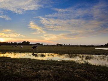 Koeien bij zonsondergang van Louis Kreuk