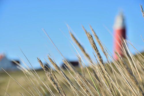 Vuurtoren Waddeneiland Texel van Maurice Gort