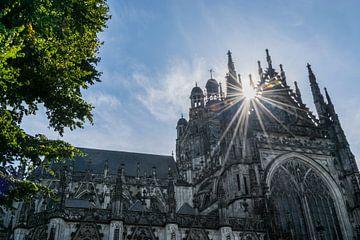 Sint Jan Kathedraal in Den Bosch, close up van onderen, met tegenlicht