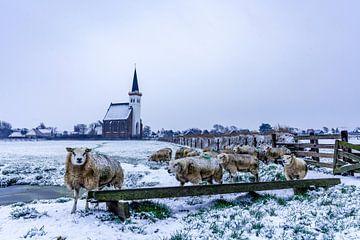 Den Hoorn - Texel - in de winter van Texel360Fotografie Richard Heerschap