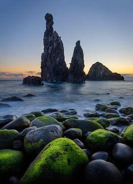 Die Wächter in Ribeira de Janelo auf Madeira von Jos Pannekoek