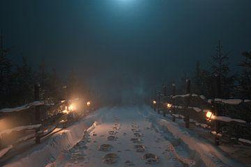 Stille winternacht op een besneeuwde landweg van Besa Art
