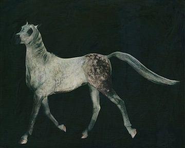 un cheval qui court fièrement