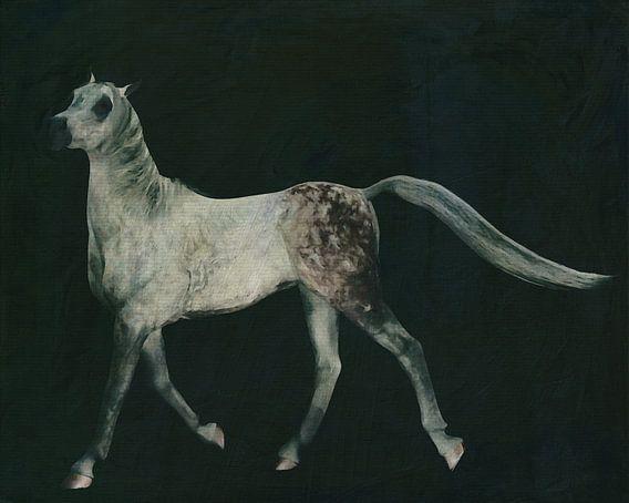 paard dat trots loopt