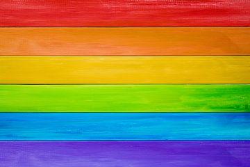 Regenboogvlag met houtstructuur van Günter Albers