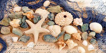 Strandschätze von christine b-b müller