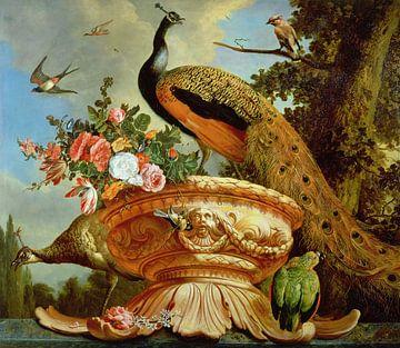 Een Pauw op een Decoratieve Urn, Melchior d'Hondecoeter