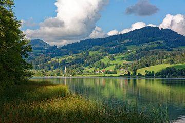 Ein Sommermorgen am Niedersonthofener See von Gisela Scheffbuch