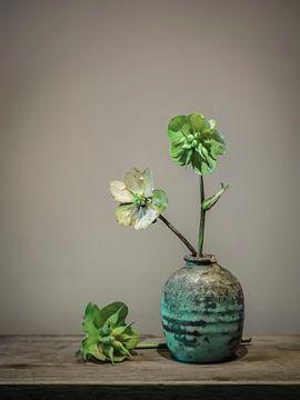 Stilleben-Vase mit Taubenkraut/Scabiosa von Karin Bazuin