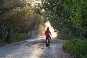 Faire du vélo dans la lumière du soir sur Frank Alberti