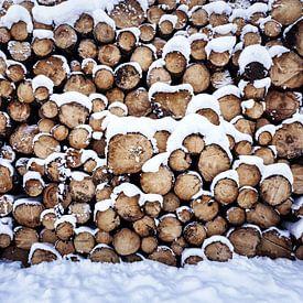 Holzhaufen von Oliver Henze
