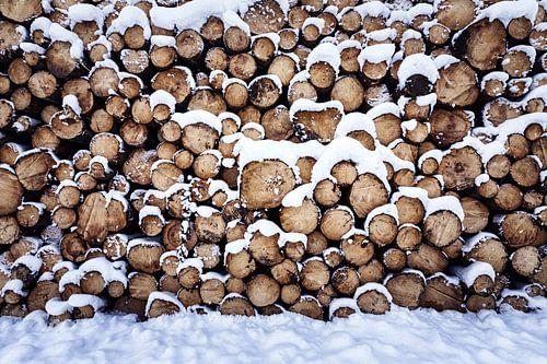 Holzhaufen van Oliver Henze